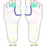 th (5)両足 甲状腺